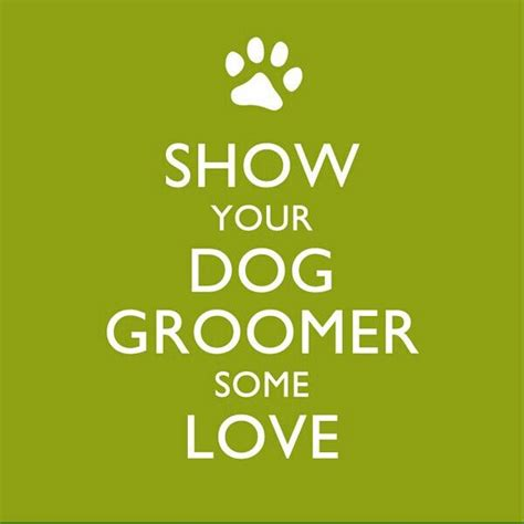 how much to tip groomer 73 best images about grooming tips info for clients on itchy pets