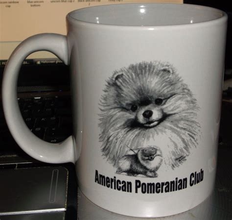 american pomeranian club american pomeranian club cup by mystmoonstruck on deviantart