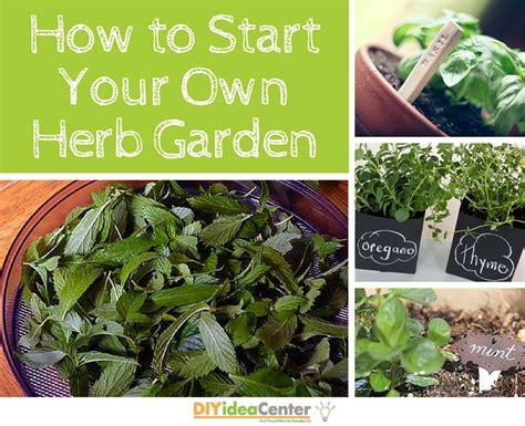 how to start an organic garden in your backyard how to start your own herb garden diyideacenter com