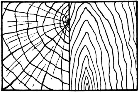 wood pattern drawing wood clipart etc