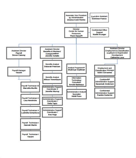 employee organizational chart template hr org chart pictures to pin on pinsdaddy