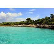 Menorca Blue  Son Saura