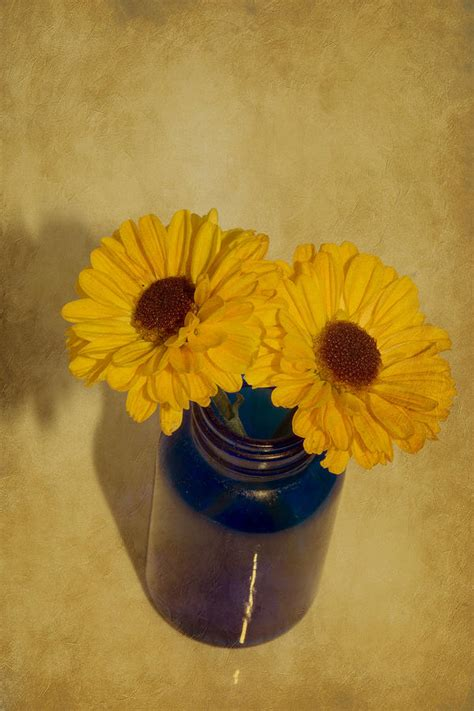 two yellow flowers in vase photograph by miller