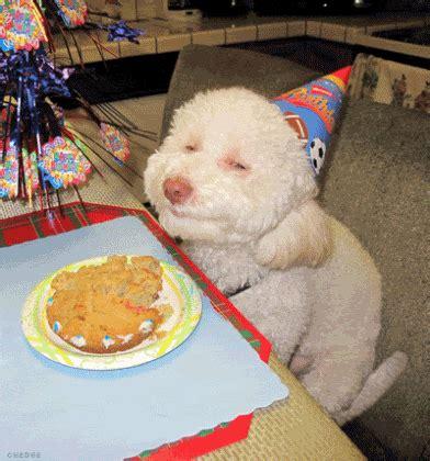 happy birthday puppy gif moving animated happy birthday greeting images birthday and celebration gif