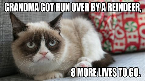 Cat Christmas Meme - crappy holidays from grumpy cat grumpy cat cat memes