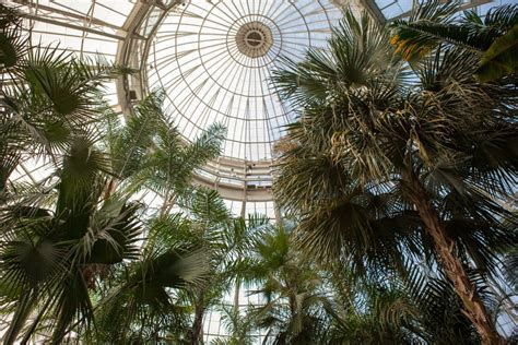new york botanical garden events at new york botanical garden