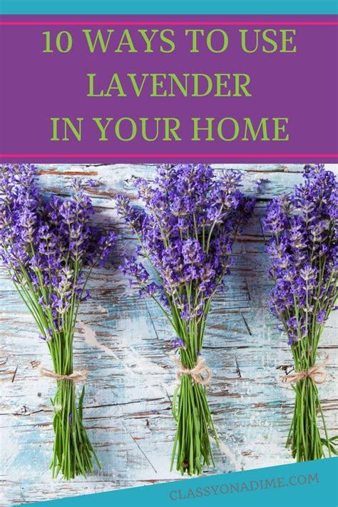10 ways to use lavender the classy chapter
