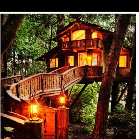 live in tree house pictures pin by breanna hiatt on home pinterest