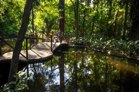 el jardn a la pozo de los deseos picture of jardin botanico la laguna san salvador tripadvisor