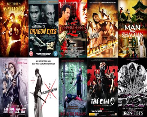film studies recommended films best martial arts movies of 2012