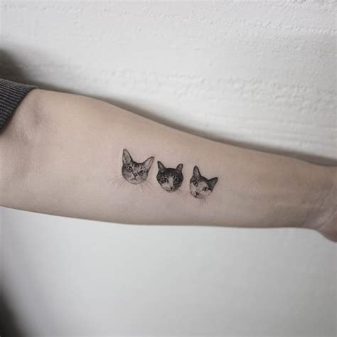 cat tattoo south korea cat cattattoo tattoo hongdam 고양이타투 타투 홍담 tatts