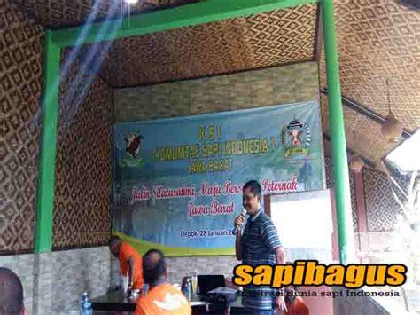 Bibit Sapi Jateng irfan arif terpilih menjadi ketua ksi jabar sapibagus