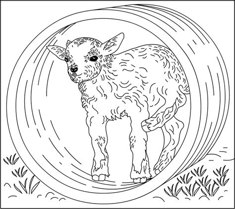 nanny goat coloring page where is my mammy coloring page