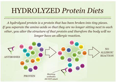 hydrolyzed protein food hydrolyzed protein diets 171 pet food nutrition