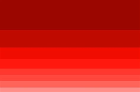 all shades of red all shades of red all shades of red glamorous it s quot wine