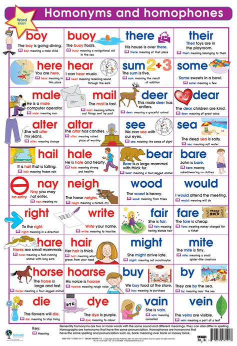 printable homophone poster homonyms and homographs wall chart teaching classroom