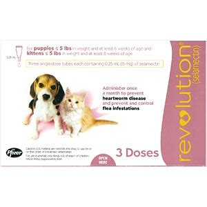 revolution for puppies and kittens revolution for dogs cats 5 lbs 3 pack pink vetdepot