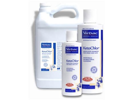 ketoconazole for dogs ketochlor shoo 1 ketoconazole 2 chlorhex 8 oz
