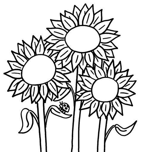 clipart of flowers coloring pages coloring page flowers