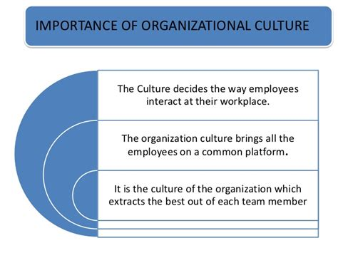Organisational Culture With Exles Company Culture Template