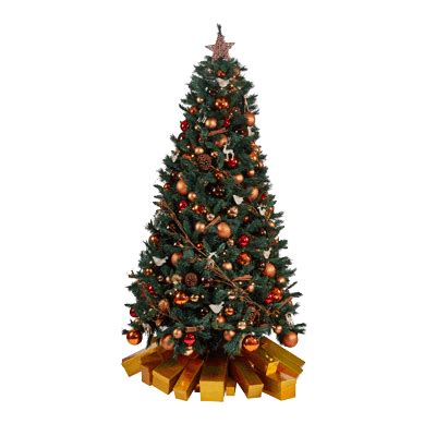 christmas tree hire office commercial phs greenleaf