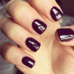 gel color nails 25 best ideas about opi gel on opi gel