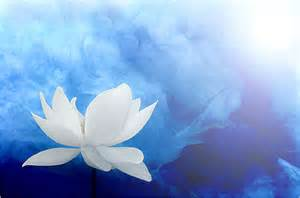 White Lotus Sect Happy Healthy Wholly Homes Live The You