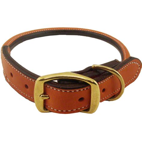 collars for puppies collars pitbull collars pink pitbull collar collar harness breeds