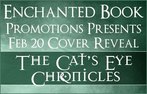 spacetime time quest chronicles books teatime and books cover reveal sora s quest the cat s