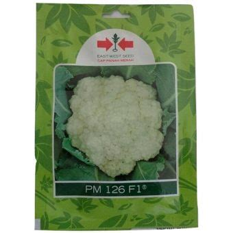 jual benih bunga kol pm 126 f1 250 biji murah bibitbunga
