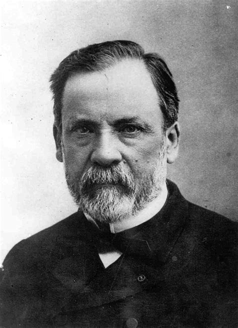 biography of louis pasteur pasteurization louis pasteur www pixshark com images