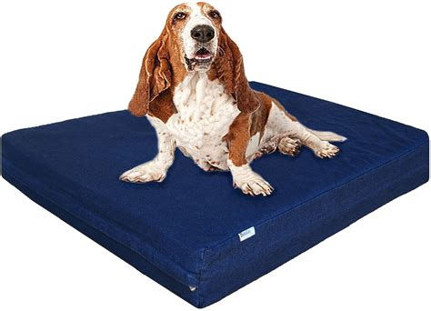 xl dogs terrific oversized bed xl memory foam bed uk amazoncom beds and costumes