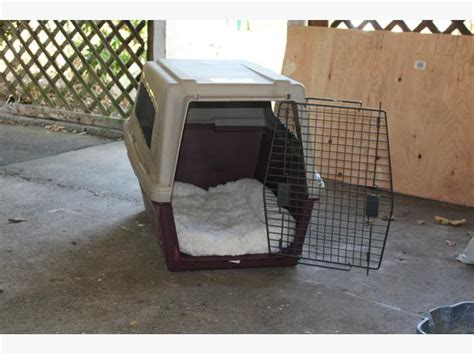 large crate size excellent condition large size crate city