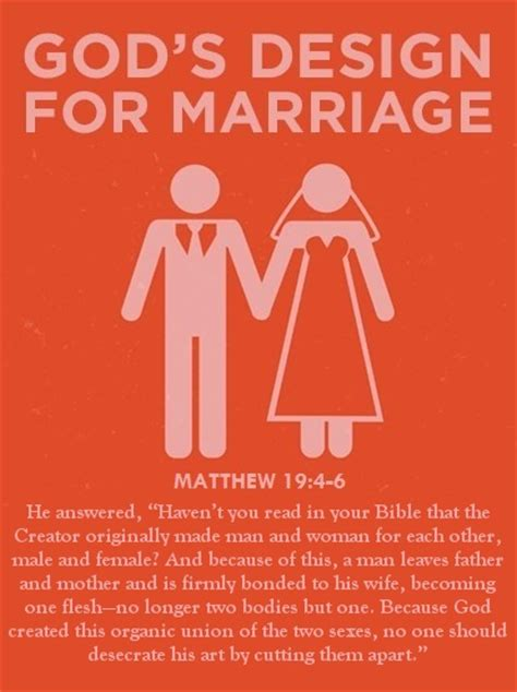 marriage god s way a biblical recipe for healthy joyful centered relationships books a lifestyle of peace philosophy jesus