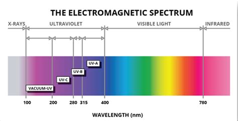 how much is a uv light for understanding ultraviolet led applications and precautions