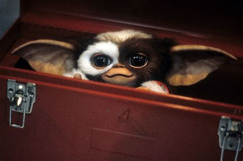 the world s best photos of gremlins and new gremlins is not a remake or reboot says zach galligan nme