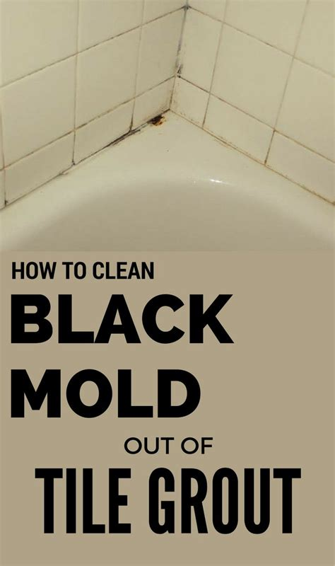 1000 ideas about remove black mold on remove