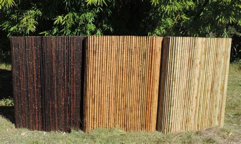 backyard x scapes rolled bamboo fencing shop backyard x
