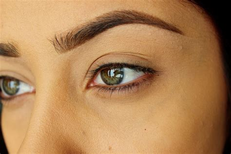 Istimewa Beverly Brow Wiz Brow Wiz how i fill in my eyebrows update beverly