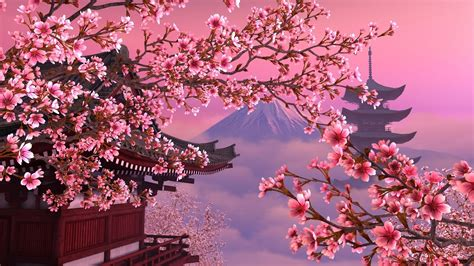 sakura wallpapers images  pictures backgrounds