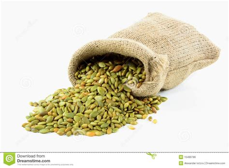 spilled pumpkin seeds royalty free stock image image