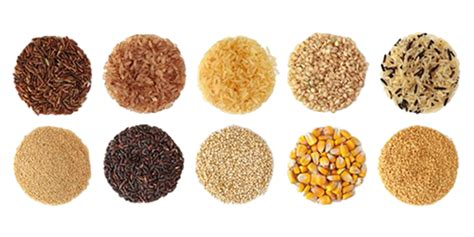 alimenti che contengono frumento dieta senza glutine il regime alimentare per la celiachia