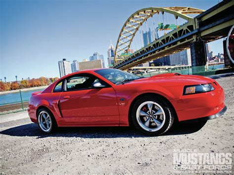 Ford Gt 2000 2000 Ford Mustang Gt Side View Photo 51310028 2000