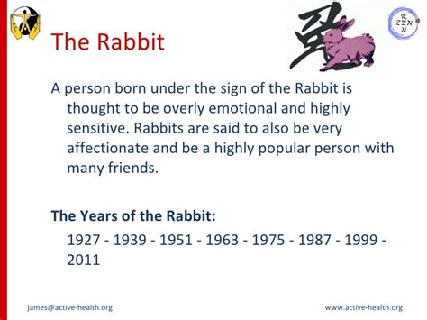 new year hare meaning new year of the rabbit meaning 28 images rabbit zodiac
