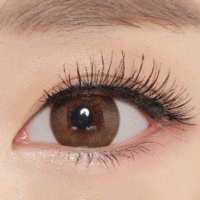buy neo extra dali brown circle lenses | eyecandys