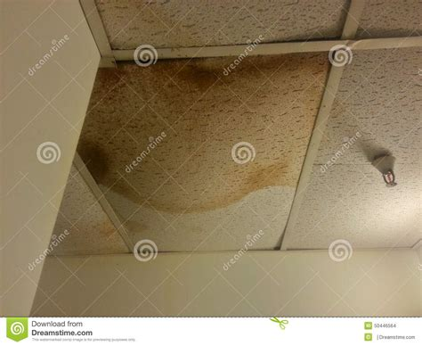 leaking ceiling stock images royalty free images repair the damage pipe royalty free stock image