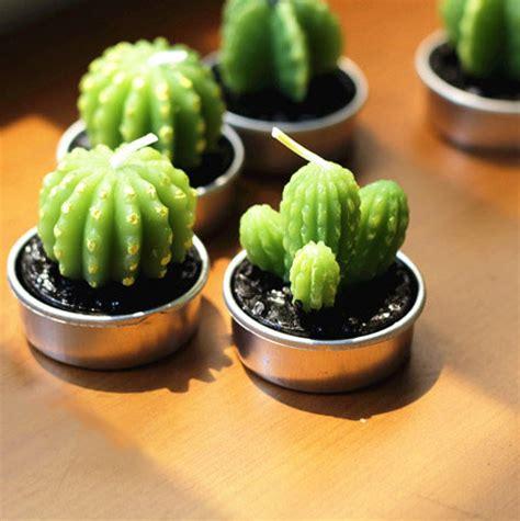 Bantal Kaktus Hijau benda benda yang dapat diletakkan di atas meja kerja