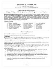 Loan Advisor Sle Resume by Bank Executive Resume