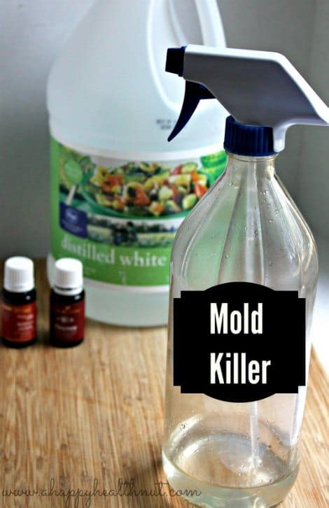 Mold Detox Books by Diy Mold Removing Spray