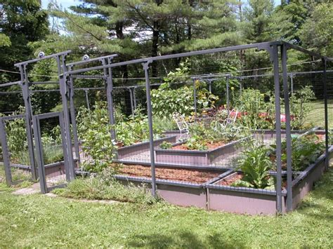 modern backyard vegetable garden house design with high wire garden fence with gate and small